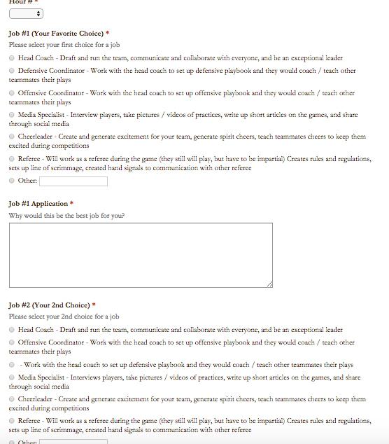 sports direct job application form